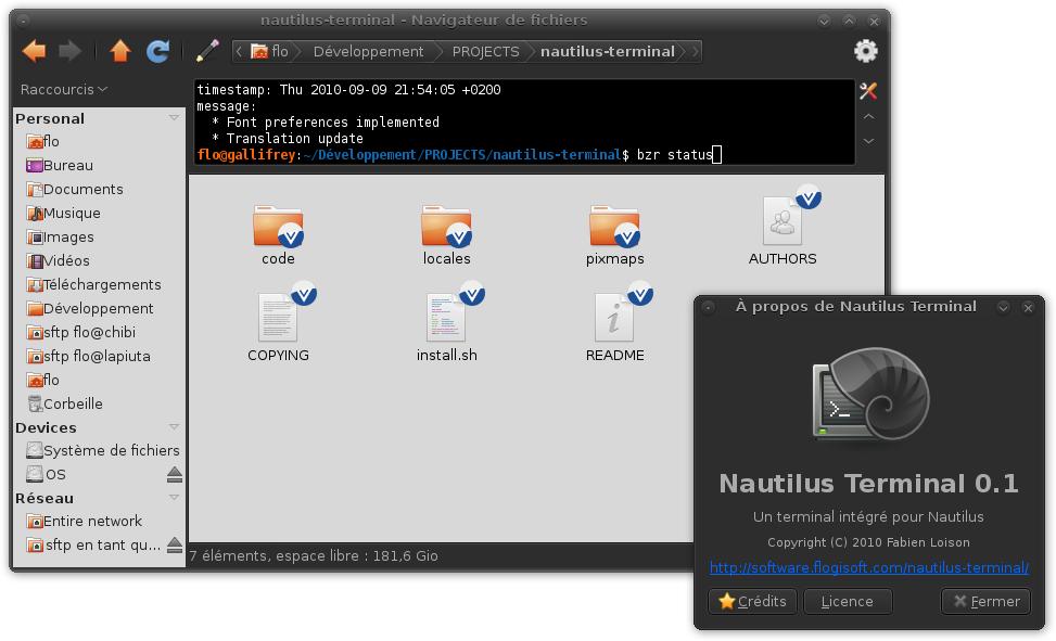 Capture d'écran de Nautilus Terminal v0.1