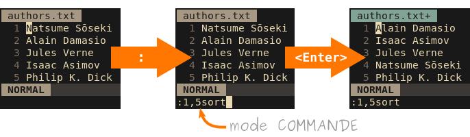 Exemple d'utilisation du mode COMMANDE avec «:1,5sort»